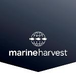 Marine Harvest – M3 Uppgradering Spanien